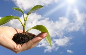 Fostering and nurturing the growth mindset