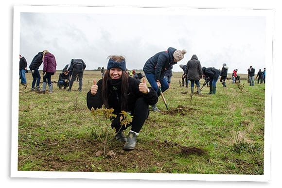 photo of tree planting