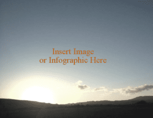 Insert Image or Infographic here