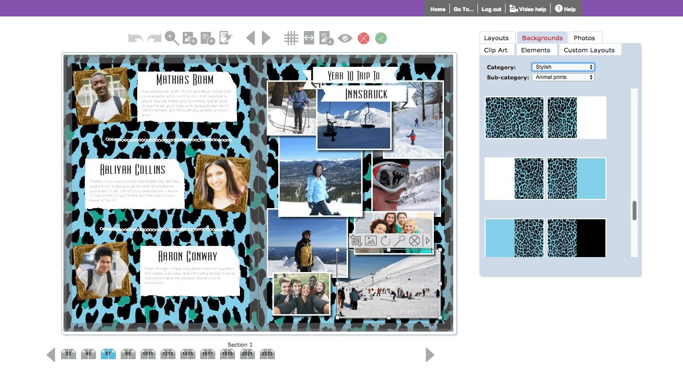 Animal Print Backgrounds in Yearbook Hub